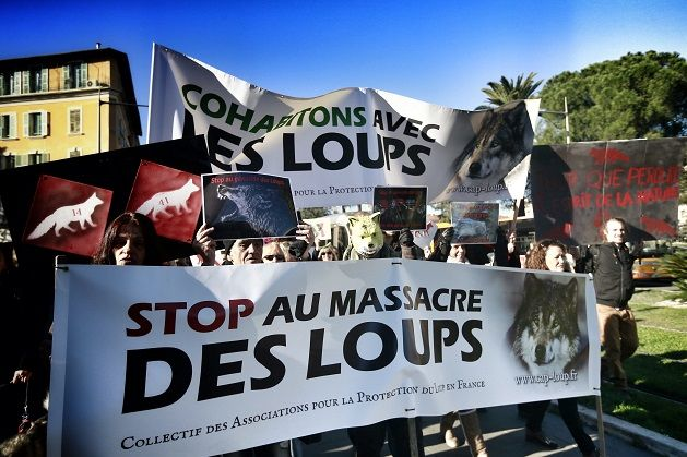 Manifestation pro-loup