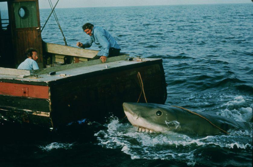 Jaws Movie Stills