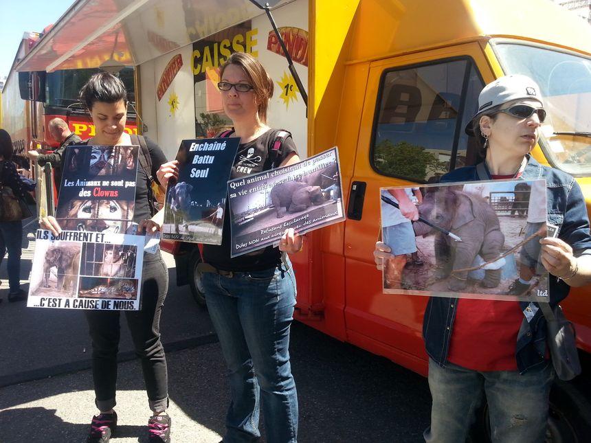 Manifestation de défenseurs des animaux devant le cirque Pinder à Valence