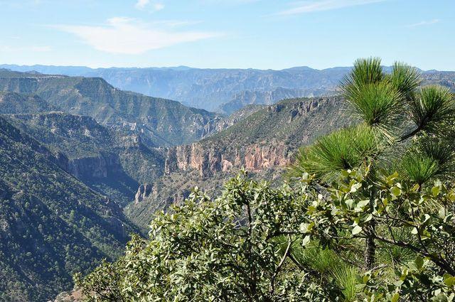 Sierra Madre / Mexique