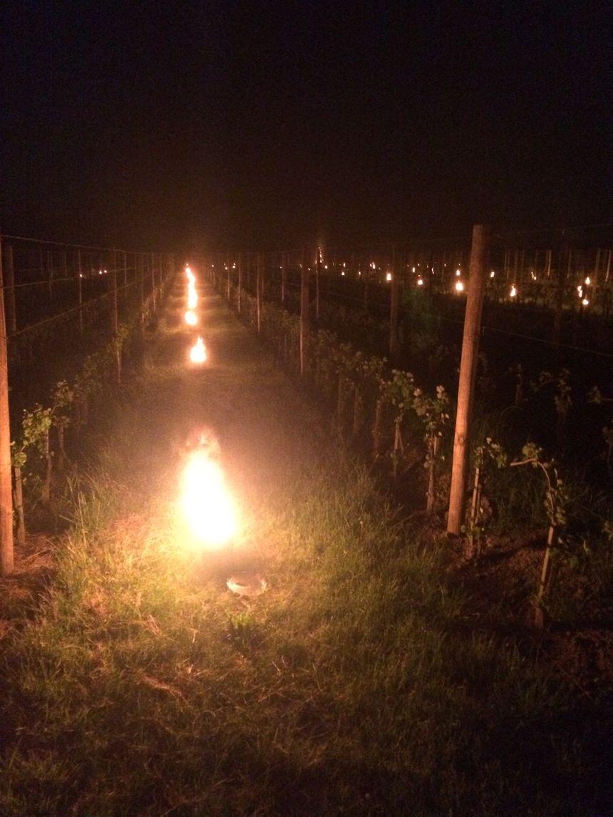 Ces bougies ont illuminé les coteaux de la vallée du Rhône