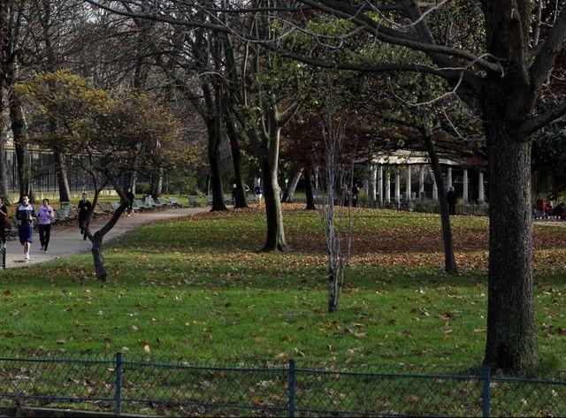 La foudre est arrivée en quelques minutes ce samedi au parc Monceau à Paris