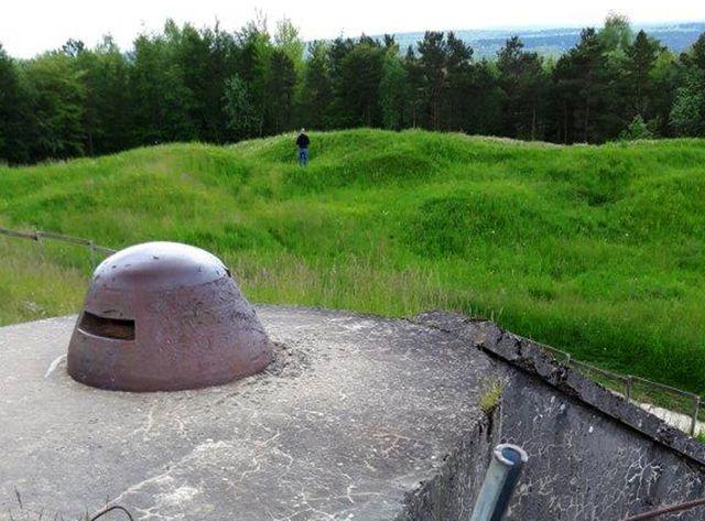 La forêt domaniale de Verdun, vue ici du fort de Douaumont, recouvre aujourd'hui le champ de bataille