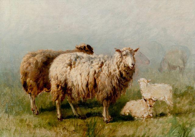 Rosa Bonheur - Moutons