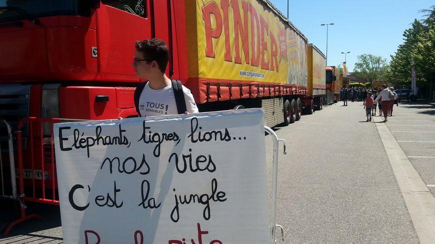 Des défenseurs des animaux manifestent devant le cirque Pinder à Valence