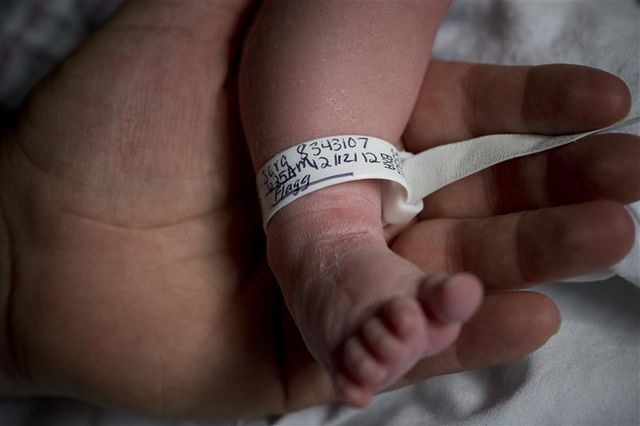 natalité stable au sein de la population française en 2012