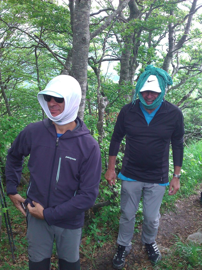 Des oeilleres pour limier le champ visuel et le vertige