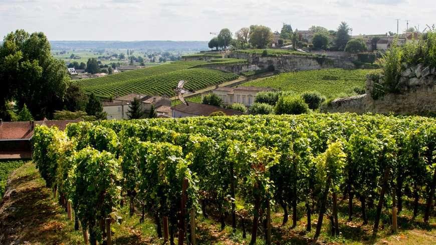 Le vignoble de Saint Emilion compte déjà  deux grands crus classés cultivés en Bio