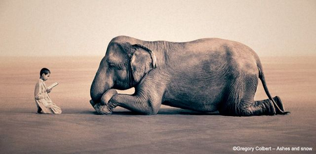 © Gregory Colbert. All rights reserved.