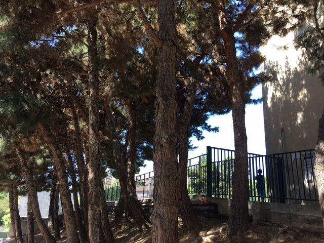 L'école primaire Eugène Cas à Marseille, aux Chartreux