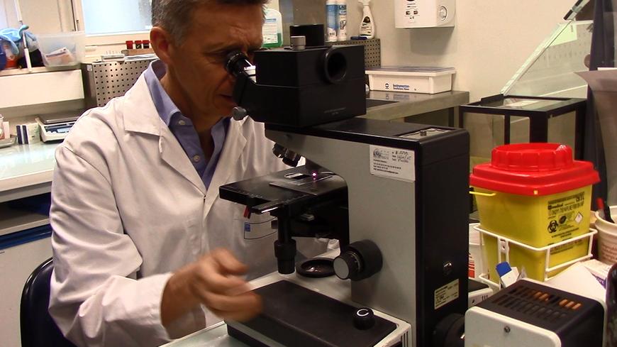 Vid o dans les coulisses du chu de rennes le - Cabinet d anatomie et cytologie pathologiques ...