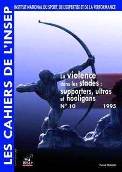 La violence dans les stades, Patrick Mignon