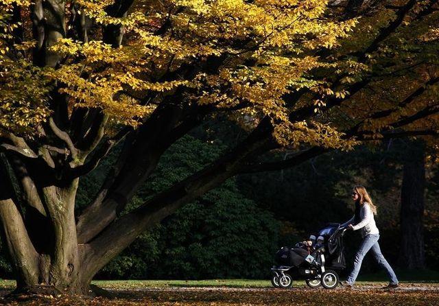 hausse des fraudes aux allocations familiales sanctionnées en 2013