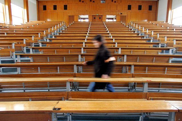 l'expatriation des diplômes français n'a encore rien d'une fuite