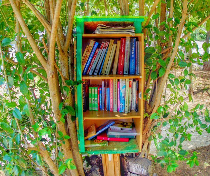 Bibliothèque dans la rue