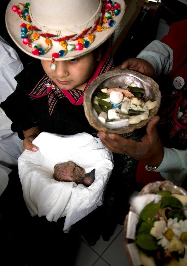 Enfant Kallawaya durant un rituel