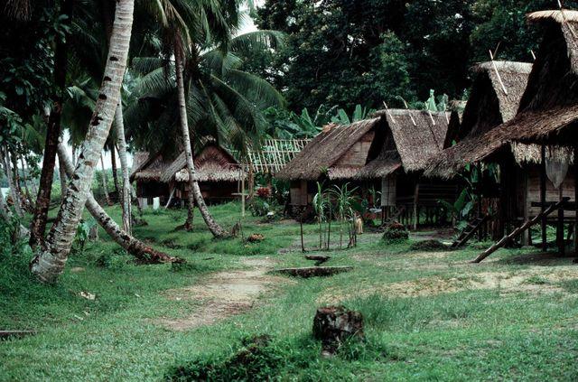 Maison traditionnelle, sur pilotis