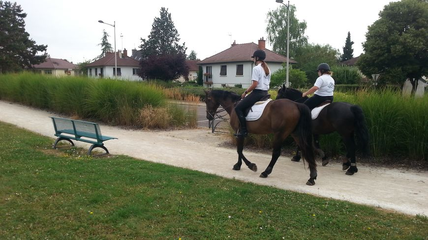 A Quetigny, la brigade équestre patrouille dans les parcs et jardins de la commune jusqu'au 31 août