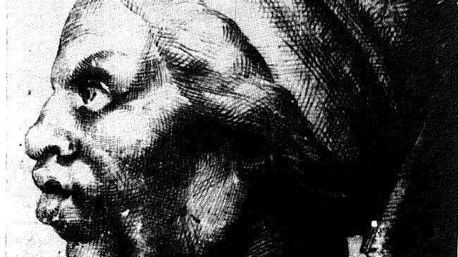 Le dessin qui pourrait avoir été réalisé par Léonard de Vinci.
