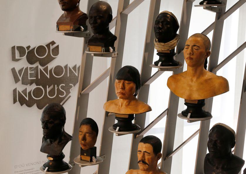 Au Musée de l'Homme, à Paris