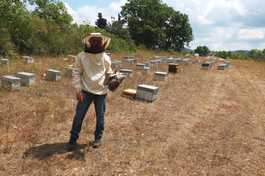 Marc Rebuffo près de ses ruches