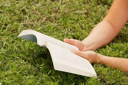 Que lire cet été ?