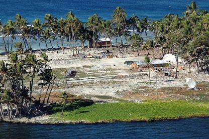 Prise de vue datant de  2005, sur le village des chercheurs naturalistes dans la cocoteraie de l'atoll de Clipperton