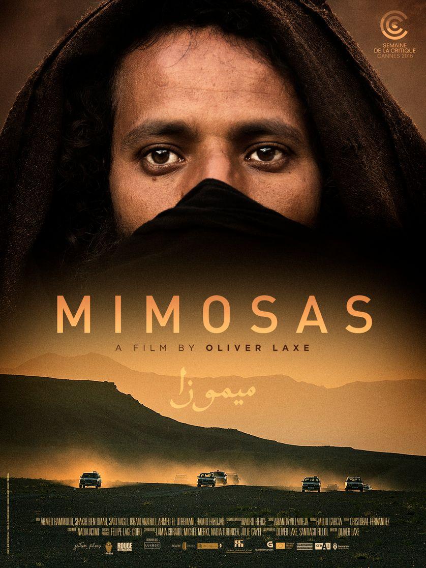 Votre dernier film visionné - Page 11 838_mimosas-poster