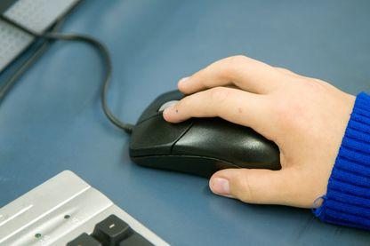 Les enseignants sont de plus en plus nombreux à utiliser des logiciels d'exercice en ligne.