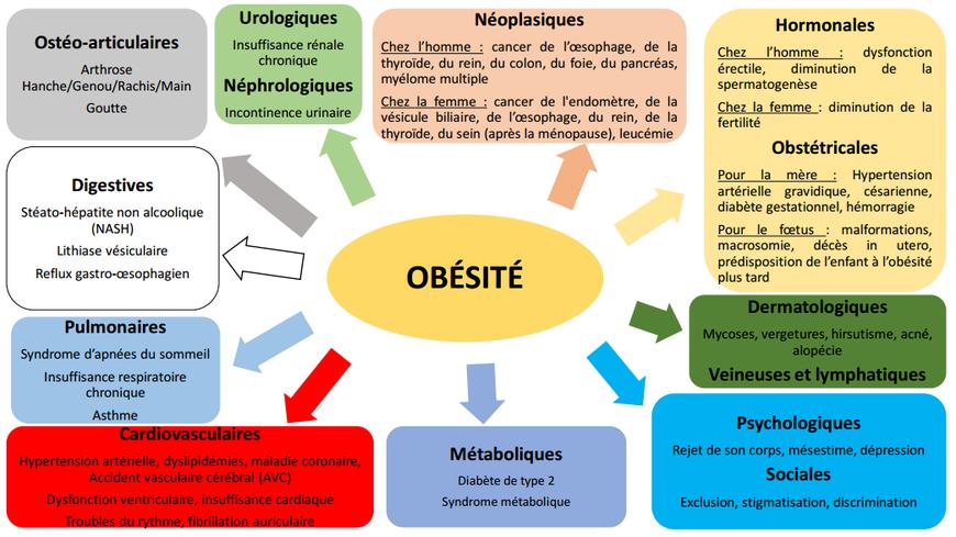 du obesite