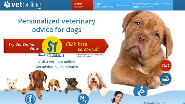 Le site vetonline fournit des diagnostics après avoir modélisé la méthode de travail des vétérinaires