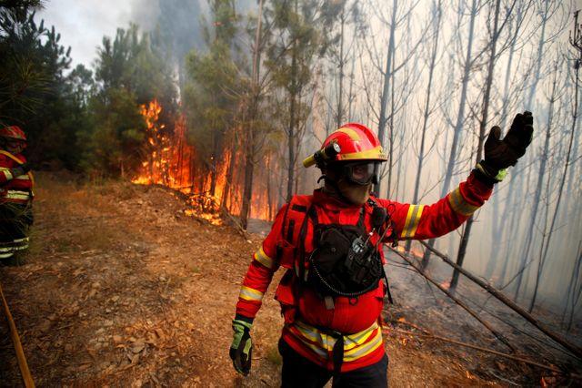 Intervention des pompiers sur un feu de forêt à Sao Pedro do Sul