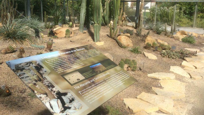 Le havre aux jardins suspendus des dizaines d 39 esp ces for Jardins suspendus le havre horaires