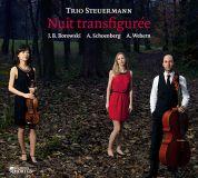 Schoenberg Steuerman Trio