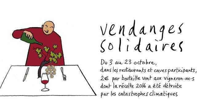 Vendanges solidaires du 3 au 23 octobre
