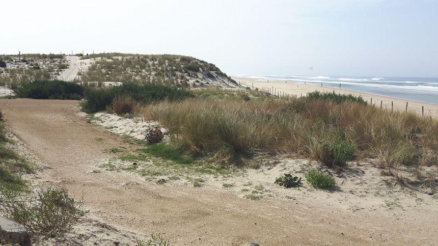 la dune à Biscarrosse Plage