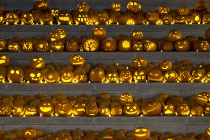 3000 citrouilles lanternes d'Halloween exposées à Londres en 2014