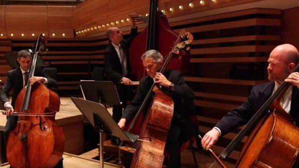 Une octobasse à l'Orchestre symphonique de Montréal
