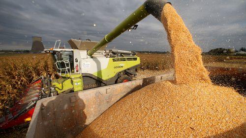 Épisode 1 : Crise des céréales, Brexit : l'Europe au chevet de son agriculture