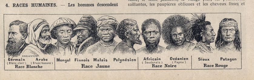 """Représentation des différentes """"races humaines"""" (blanche, jaune, noire et rouge)"""