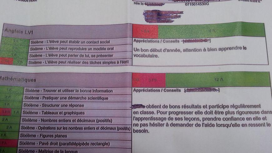 Exemple d'un bulletin sans note avec évaluation des compétences