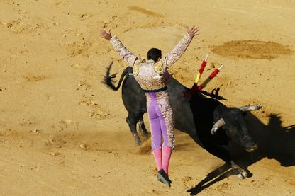 Matador vu de dos pendant une corrida