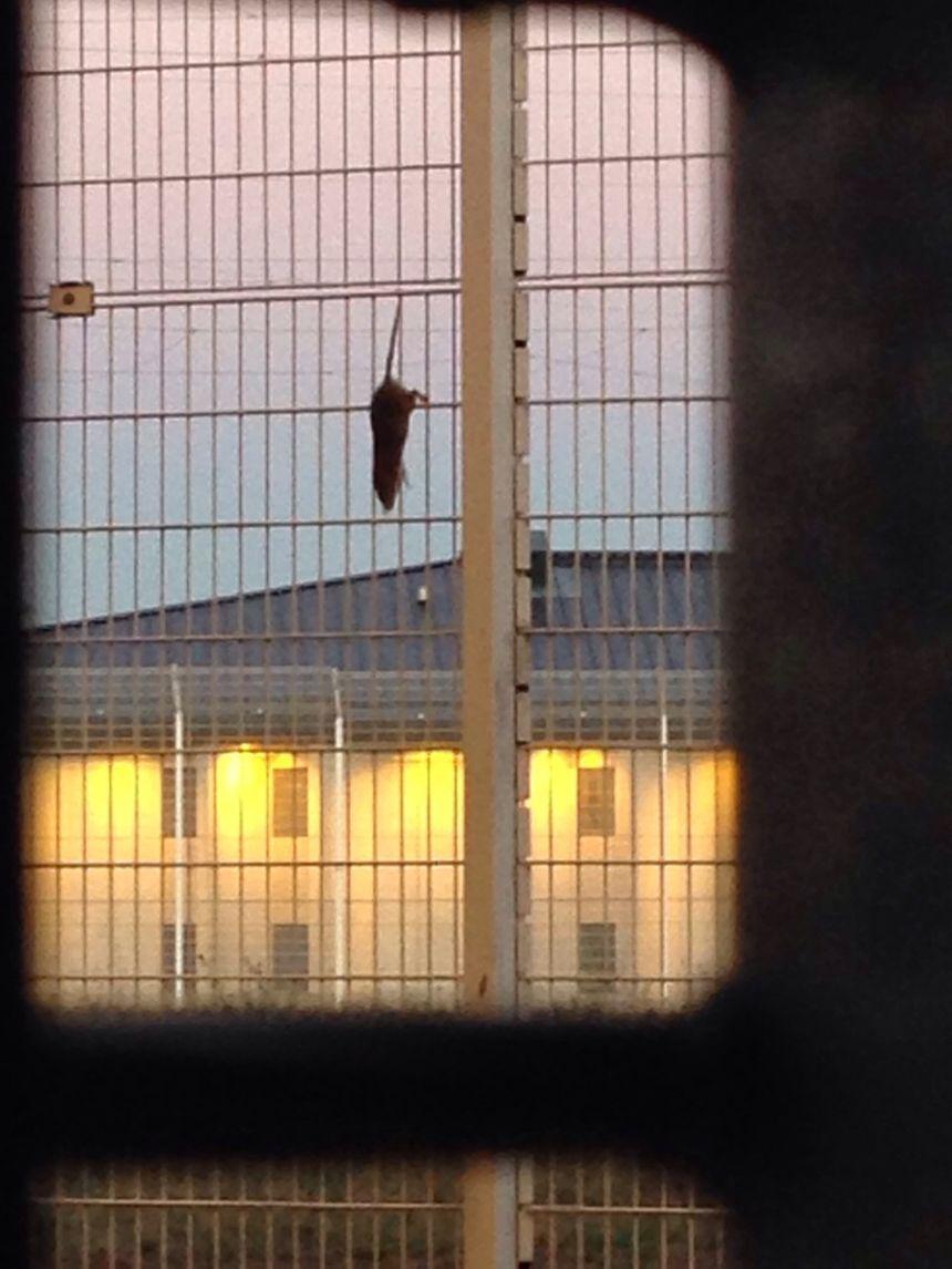 Photo prise à la prison.