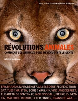 Révolutions Animales, comment les animaux sont devenus intelligents