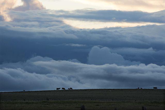 Montée de l'orage au-dessus des pâturages