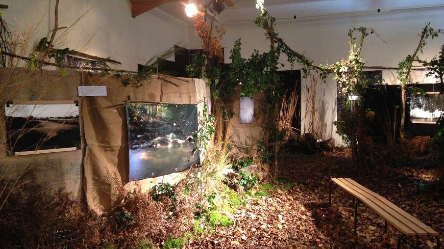 La petite salle des fêtes de Messiez transformé en mini-forêt pour faire revivre l'Abbaye de Bonnevaux