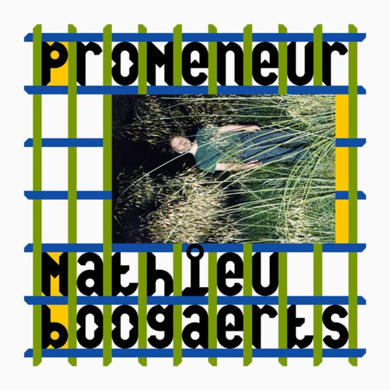 Promeneur, Mathieu Boogaerts, paru le 4 novembre dernier chez Tôt ou Tard