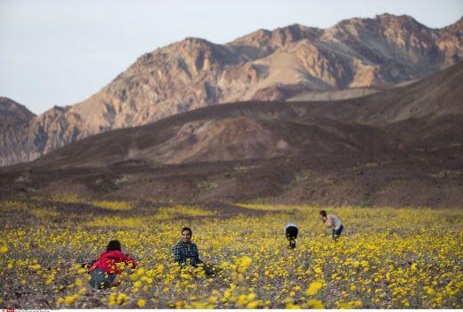 Dans la Vallée de la mort, près du Badwater Basin, en Calif
