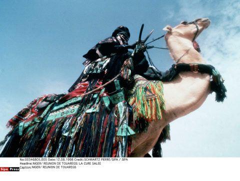 Un chameau en tenue de parade, à l'occasion de la Cure salée, une fête annuelle qui célèbre l'arrivée des pluies à la fin de l'été dans la plaine de l'Irazer