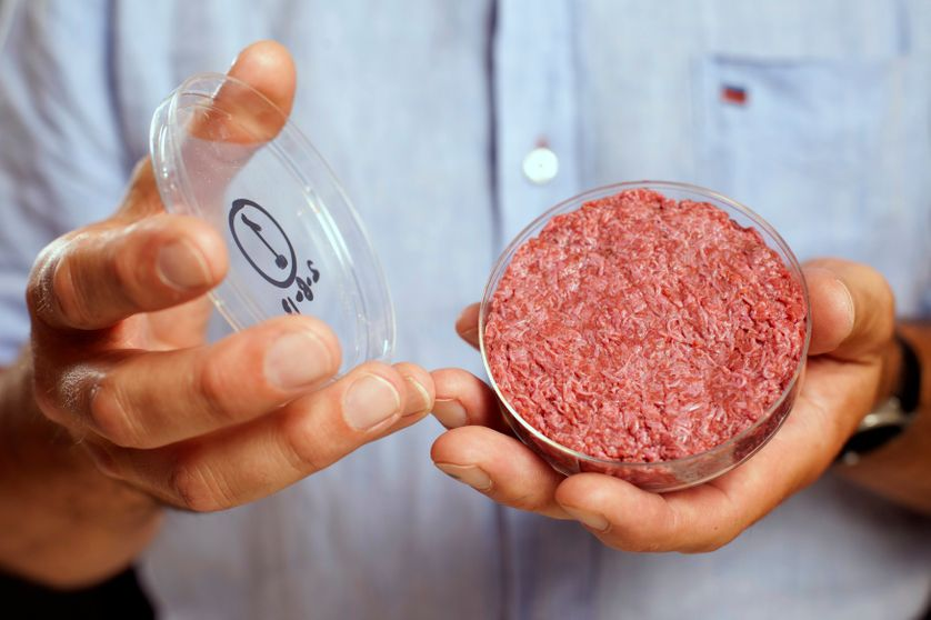 De la viande dans une boîte de Pétri : le chercheur néerlandais Mark Post est parvenu à cultiver de la viande in vitro.